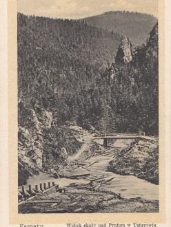 Вид скелі над Прутом в Татарові (Оренштайн)