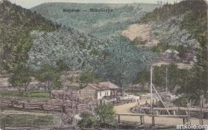 Вид на Микуличин (Оренштайн)